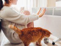 Как сэкономить на отоплении дома зимой? Призварта